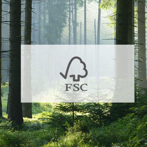 Certificazione_FSC_2_1